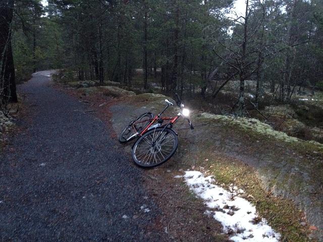 Cykel vid träd