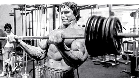 arnold-blueprint_day19_graphics-1.jpg